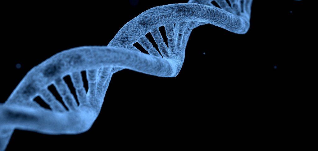 Epigenetics of branding   The bio Edit